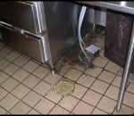 Commercial kitchen floor before pressure washing